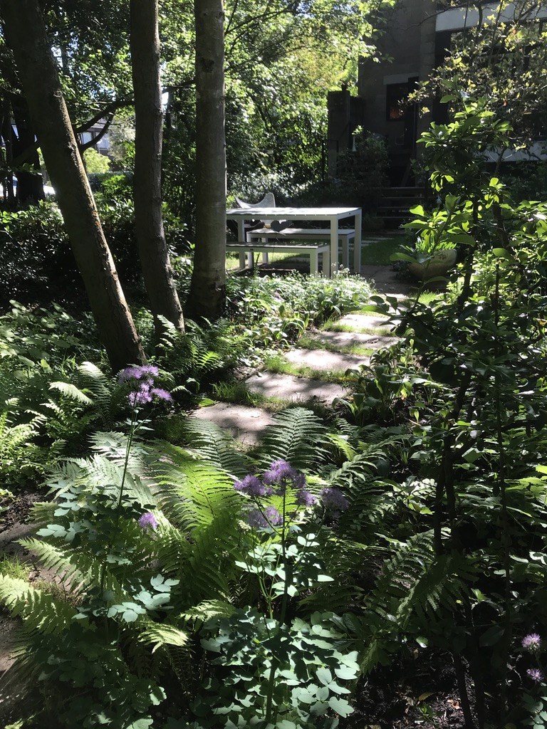 diagoon woning garden